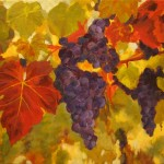 Grapes on the Vine - 2008