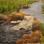 Cullowhee Creek - 2008